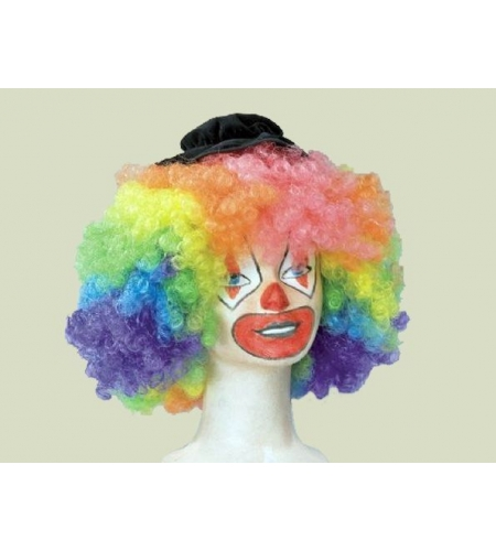 Clown multicolor wig