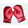 Paire gants boxeur