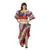 Rumba dancer ladies costume