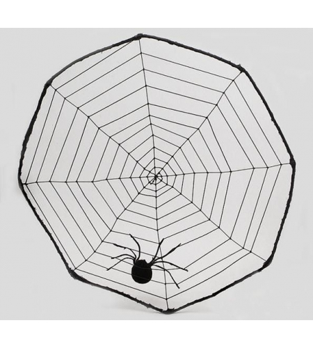 Spidernet with spider