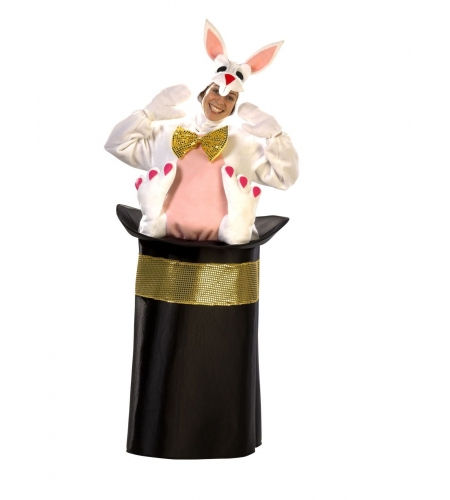 Rabbit in a hat costume